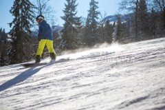 A beautiful sunny day on the mountain, the snowboarder goes down the slope, wearing a blue jacket in yellow pants. Behind the snowboarders is a pine forest and a blue sky.